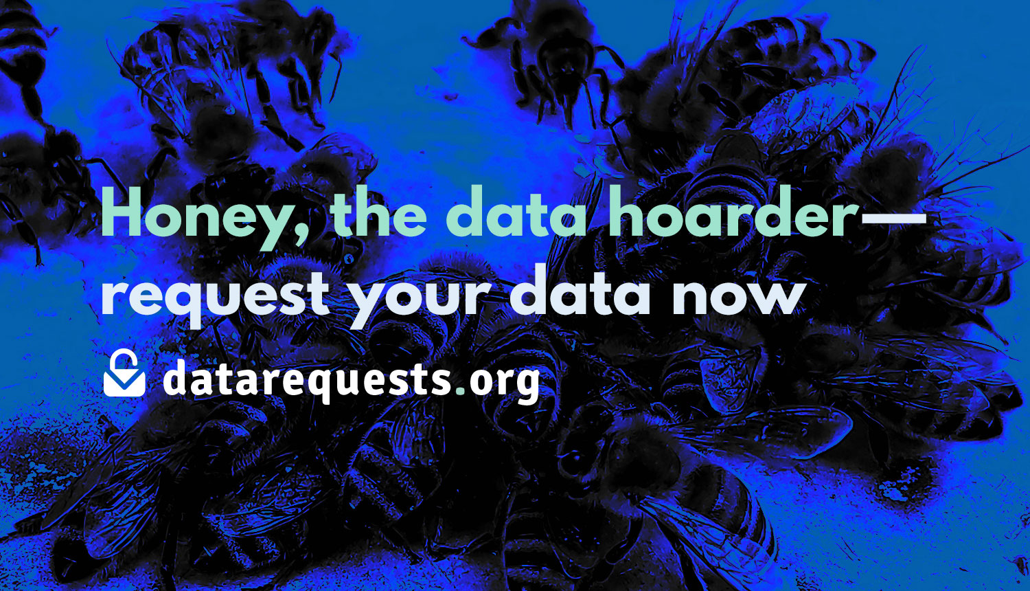 """Photo of a lot of bees that rush to a drop of sugar water, above that the text: """"Honey, the data hoarder—request your data now"""""""